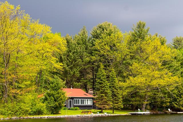 dům v parku